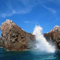 """Las Islas Marietas, las pequeñas """"Galápagos"""" de México."""