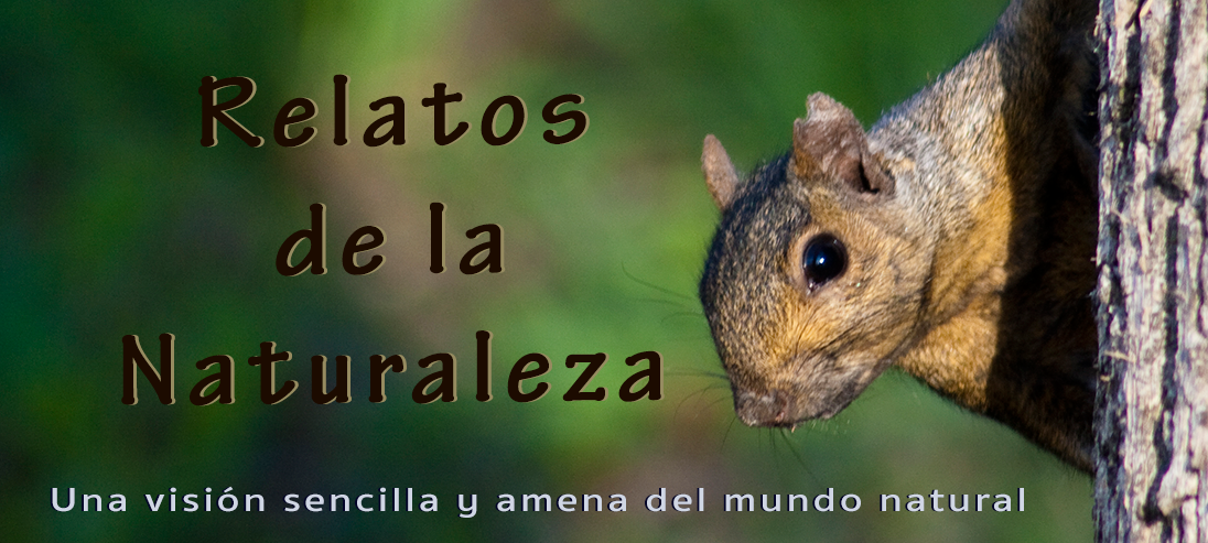 Relatos de la Naturaleza